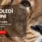 Un mercoledì da leoni: guadagnare dagli acquisti.